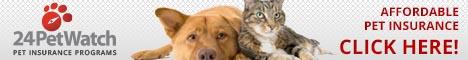 petInsurance468x60_catdog